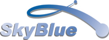 Shanghai Skyblue Chemical Co Ltd